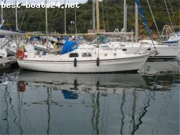 SAILING BOATS: WESTERLY 31 RENOWN